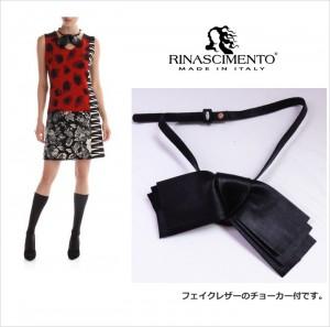 Rin69743-1